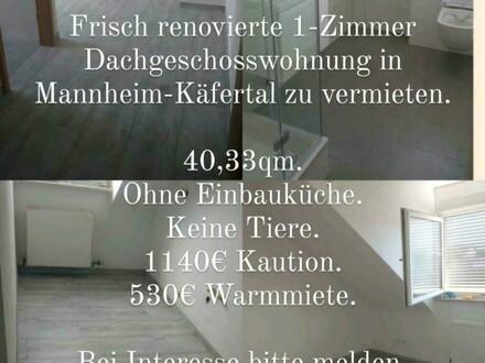 Frisch renovierte, saubere und gepflegte 1 Dachgeschoss - Zimmer Wohnung in Mannheim-Käfertal. *REDUZIERT* Mit perfekte…