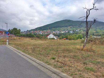 Gewerbegrundstück in Bürgstadt