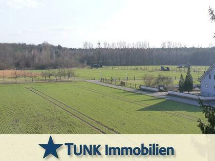 Feldrandlage! 3 Zi. ETW mit Balkon und Garage in Rodenbach - Provisionsfrei!