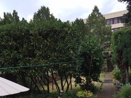 Gemütliches Reihenmittelhaus mit 4,5 Zimmern, Garten und Athmosphäre