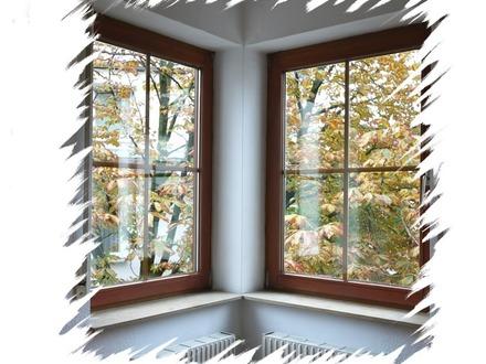 Die Fenster zur Welt