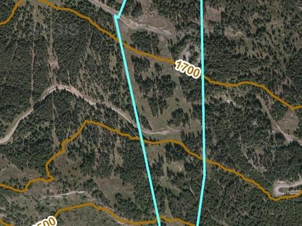 Waldgrundstück im Oberlungau