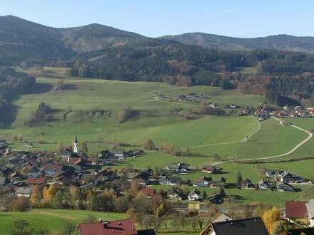 Top Baugrund in Aussichtslage in Oberwang / Mondsee - leistbar!!!!