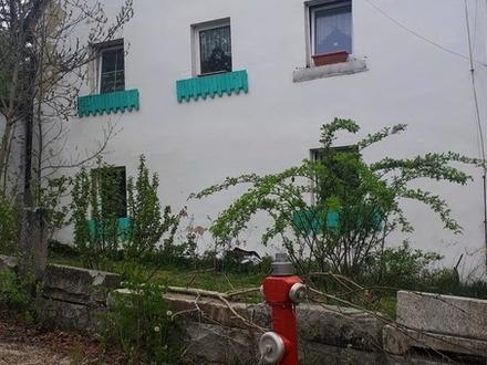 ZWEI Häuser, ehemaliges Forsthaus teils entkernt und Anbau im Kaiserhammer!
