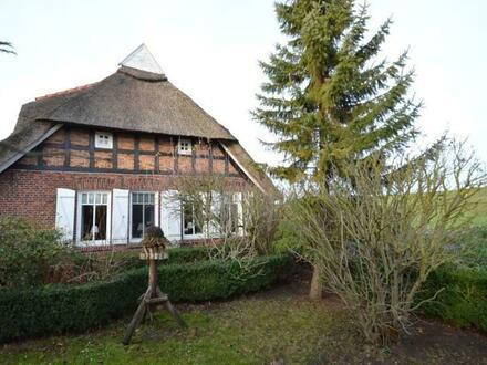 Reetdachhaus nahe Weserdeich in Berne