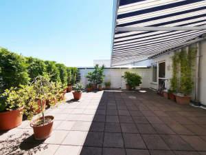 3-Zimmer-Penthouse-Wohnung Nähe Südfriedhof