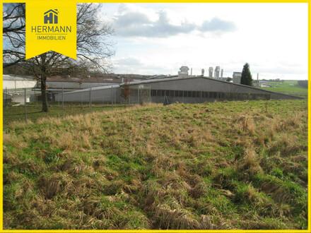 Erfüllen Sie sich Ihren Traum vom bezahlbaren Grundstück in Büdingen-Stadt!