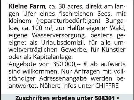 IRLAND Kleine Farm, ca. 3