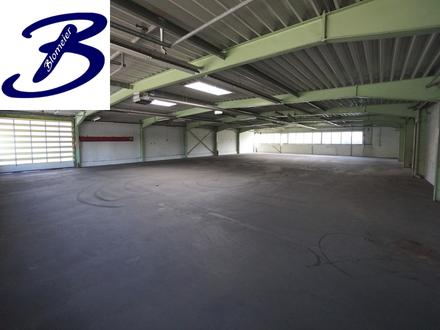 Lagerhalle in Röndinghausen-Bruchmühlen zu vermieten