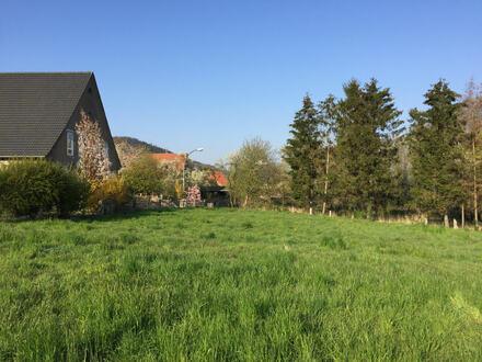 Attraktives Baugrundstück in Hüllhorst-Oberbauerschaft am Wiehengebirges!