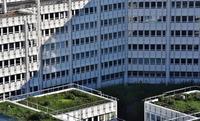 Dachbegrünung – Grüne Oasen über den Dächern der Stadt