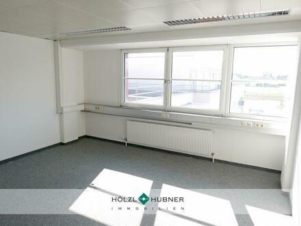 Helles Büro mit guter Raumaufteilung