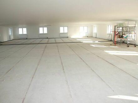 Mayence-Immobilien: Neubau-Erstbezug! ...großzügige helle Produktions-/ Bürofläche!!