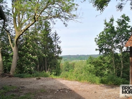 Sanierungsbedürftiger Bauernhof mit ca. 1.750 m² Grund und ca. 1.100 m² Wald im Unterallgäu