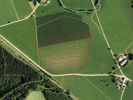 Die Gelegenheit! Landwirtschaftliches Grundstück zu verkaufen.