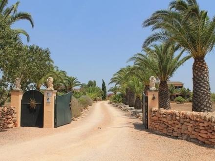 Einfahrt Palmenallee