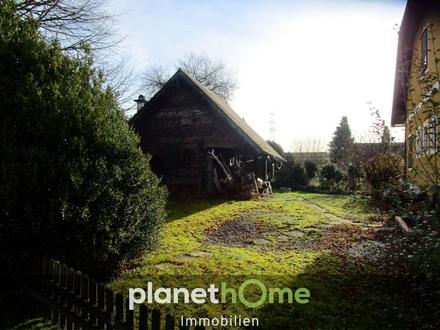 Einfamilienhaus mit Blick ins Grüne