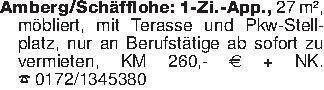 Amberg/Schäfflohe: 1-Zi.-App.,...