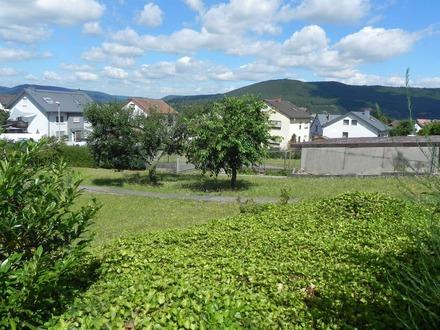 Großes Wohnbaugrundstück in Miltenberg