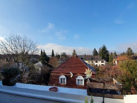 Alt Laim: Sonnige 2-Zi.-DG-Wohnung mit West-Dachterrasse - solvente Mieter
