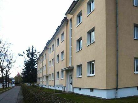 Helle, geräumige 2-Zimmerwohnung in Seidnitz