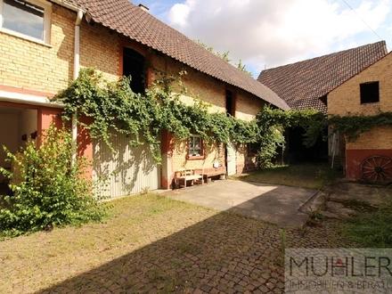 Großzügiges Hofgut mit Wohnhaus, Stallungen, Scheune und Wiese