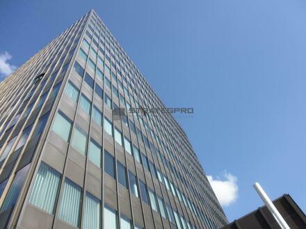 Empfangsservice - Kühlung - Blick über die Dächer Mannheims inklusive