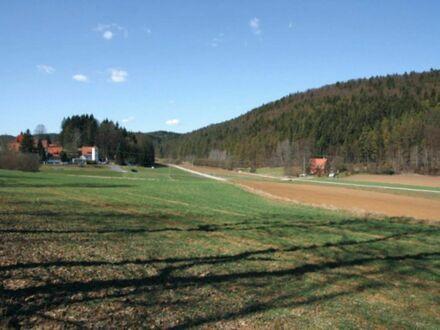 77.910,- für 3 7 1 qm voll erschlossener BAUGRUND in der Hersbrucker Schweiz * * PROVISIONSFREI * *