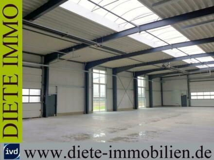 **RESERVIERT** Neubau-Gewerbehalle mit Bürofläche in Schloß Holte-Stukenbrock