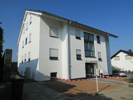 Neubau-Erstbezug! Traumhafter Blick in den Rheingau
