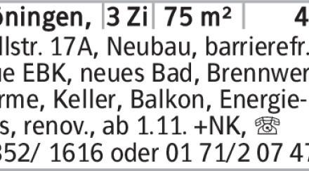 Anzeigentitel Wallstr. 17A, Neubau, barrierefr., neue EBK, neues Bad, Brennwerttherme,...