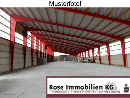 ROSE IMMOBILIEN KG: neues Lager nahe der B 482, Petershagen