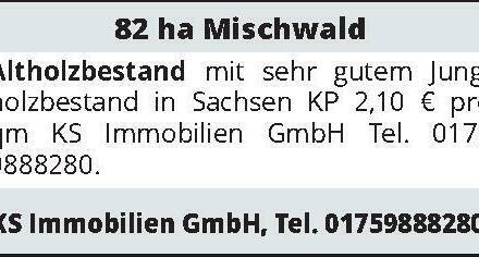 82 ha Mischwald