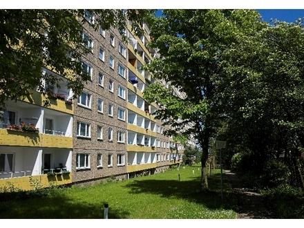 Große 3-Raum-Wohnung mit Balkon