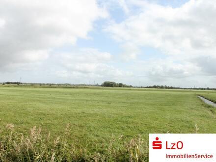 Interessante landwirtschaftliche Flächen in Nordenham OT Abbehausen zu verkaufen