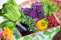 Obst und Gemüse im eigenen Garten – So funktioniert's