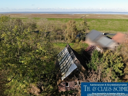 Sanierungsbedürftiges Reetdach Bauernhaus mit knapp 2,5 HA Grundstück direkt am Nordseedeich