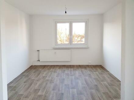 Ihre neue Wohnung- großzügig und neu renoviert