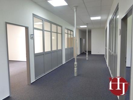 Stuhr-Varrel - Helle Büroeinheit mit modernem Grundriss!