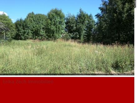 Baugrundstück in einer ruhigen Seitenstraße von 25557 Beldorf