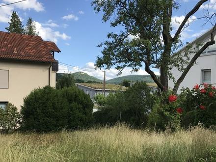 Ausblick v. der Terrasse