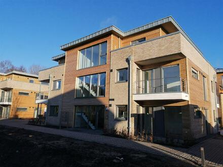 Erstbezug! Neubau-Mietwohnung im Erdgeschoss in zentrumsnaher Lage von Papenburg