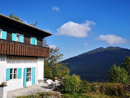 Panoramagrund Gaisberg-Idyll