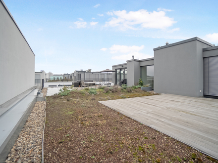 PENTHOUSE - THE MILE - with Rooftop Terracce Berlin MITTE Chausseestreet