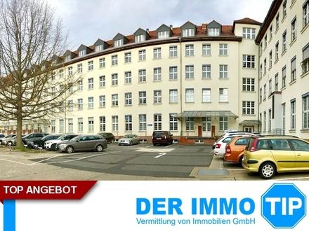 Büro in Dresden Johannstadt zur MIETE