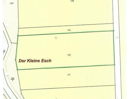Objekt Nr.: 18/718 b Ackerfläche in Hansestadt Friesoythe OT Markhausen