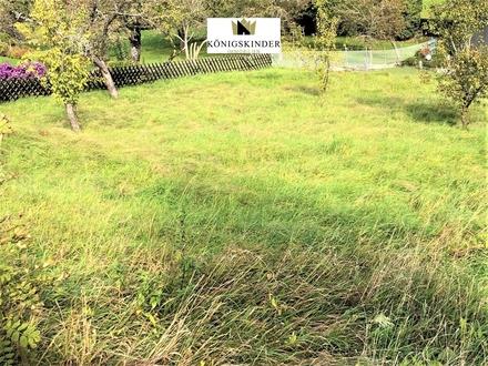 Schöne Landwirtschaftliche Fläche zu kaufen!