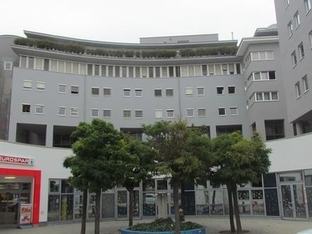 Geschäftsfläche beim Wohnpark Erdberg mit 314m²