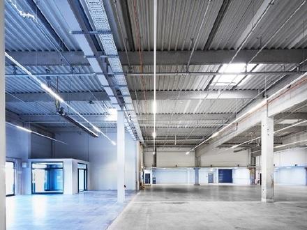 """Hochwertige Hallen- und Bürofläche im Gewerbepark """"Beim Zeugamt"""""""