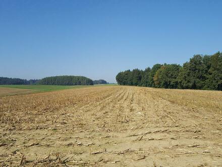 Ackerflächen bei Euernbach